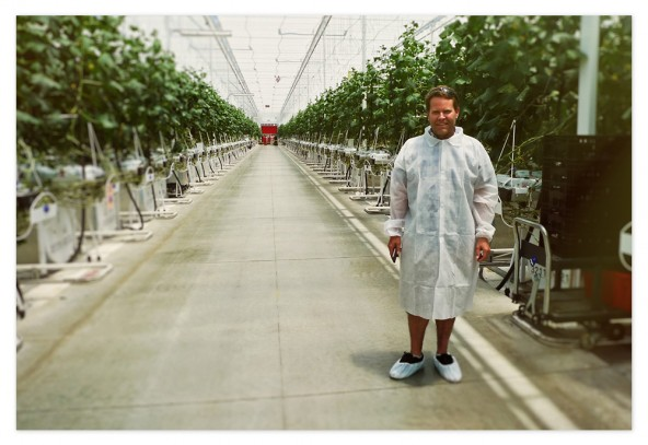 That's me standing in Windset Farms' cucumber greenhouse while on a tour of the facilities in Santa Maria, California — sporting the latest greenhouse fashion...